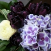 arrangement 12