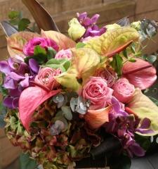arrangement 18