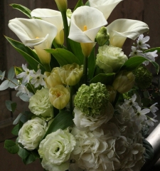 arrangement 23